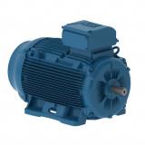 W22Xtb - dulkių uždegimui atsparūs varikliai